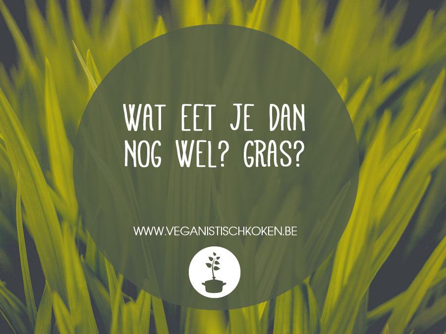 Opmerkingen die veganisten te horen krijgen: Wat eet je dan nog wel? Gras?