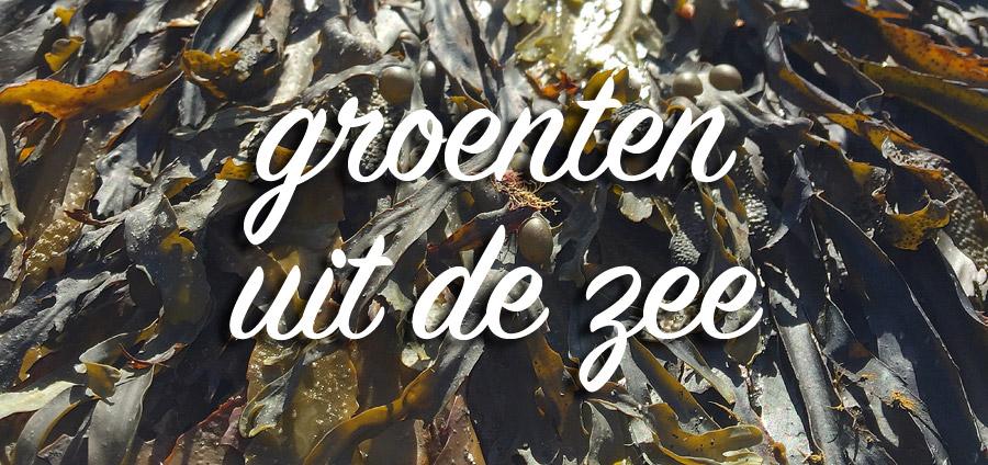 zeewier, algen - groenten uit de zee