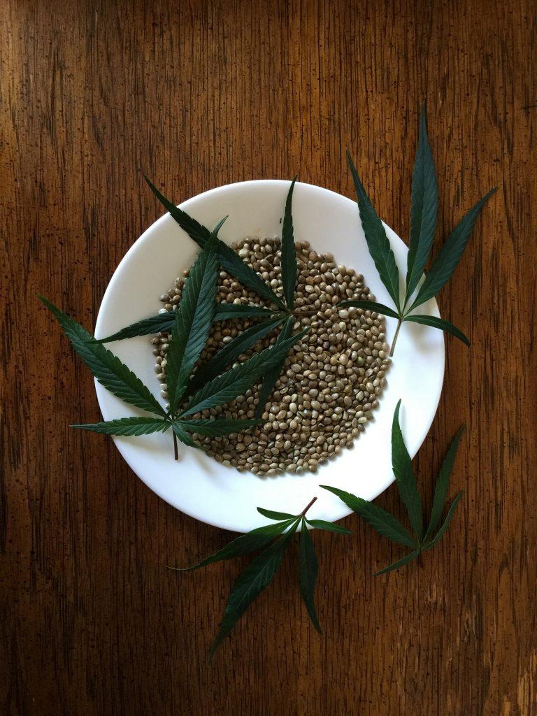 hennep - plantaardige eiwitten
