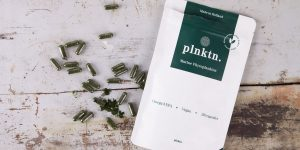 Plnktn review - marine fytoplankton