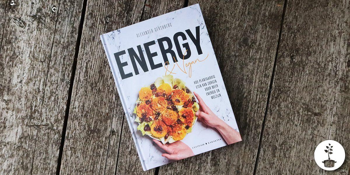 Energy & Vegan - Alexander Gershberg - review