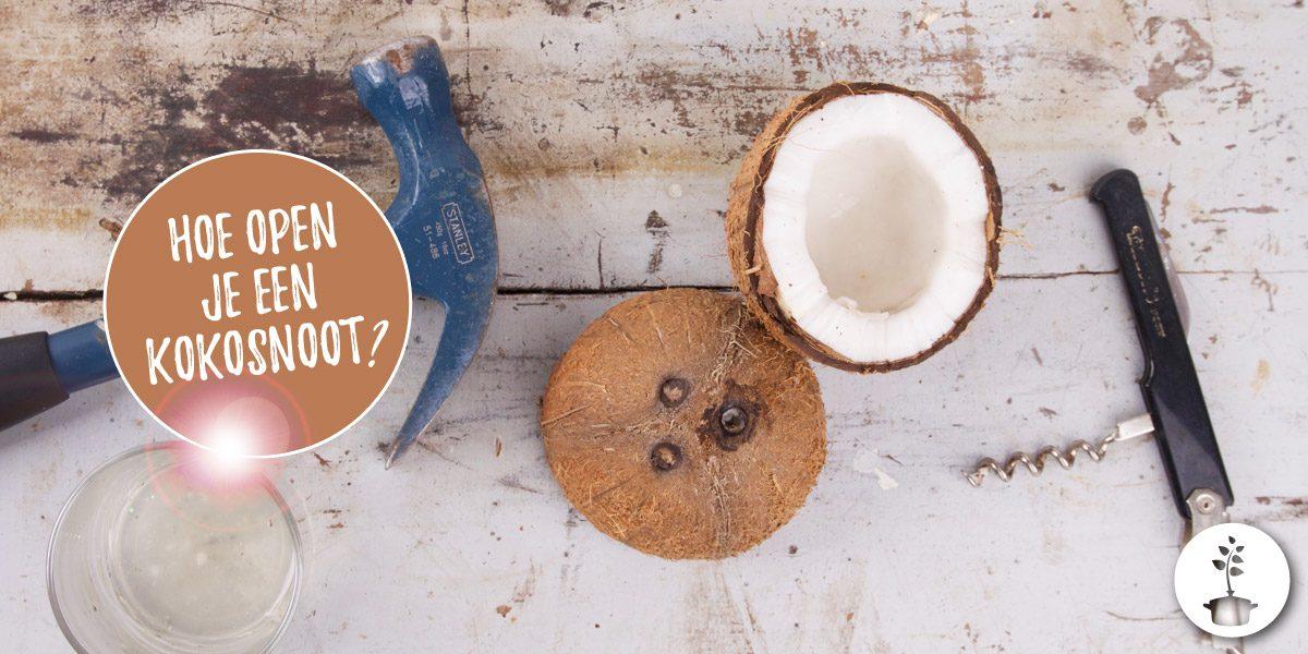 Kokosnoot openen hoe